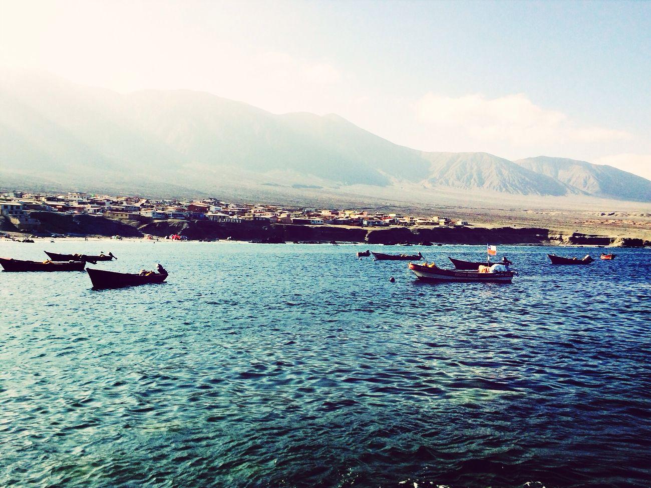 Disfrutan la orilla y luego se van... Sea Old Natural Nostalgia