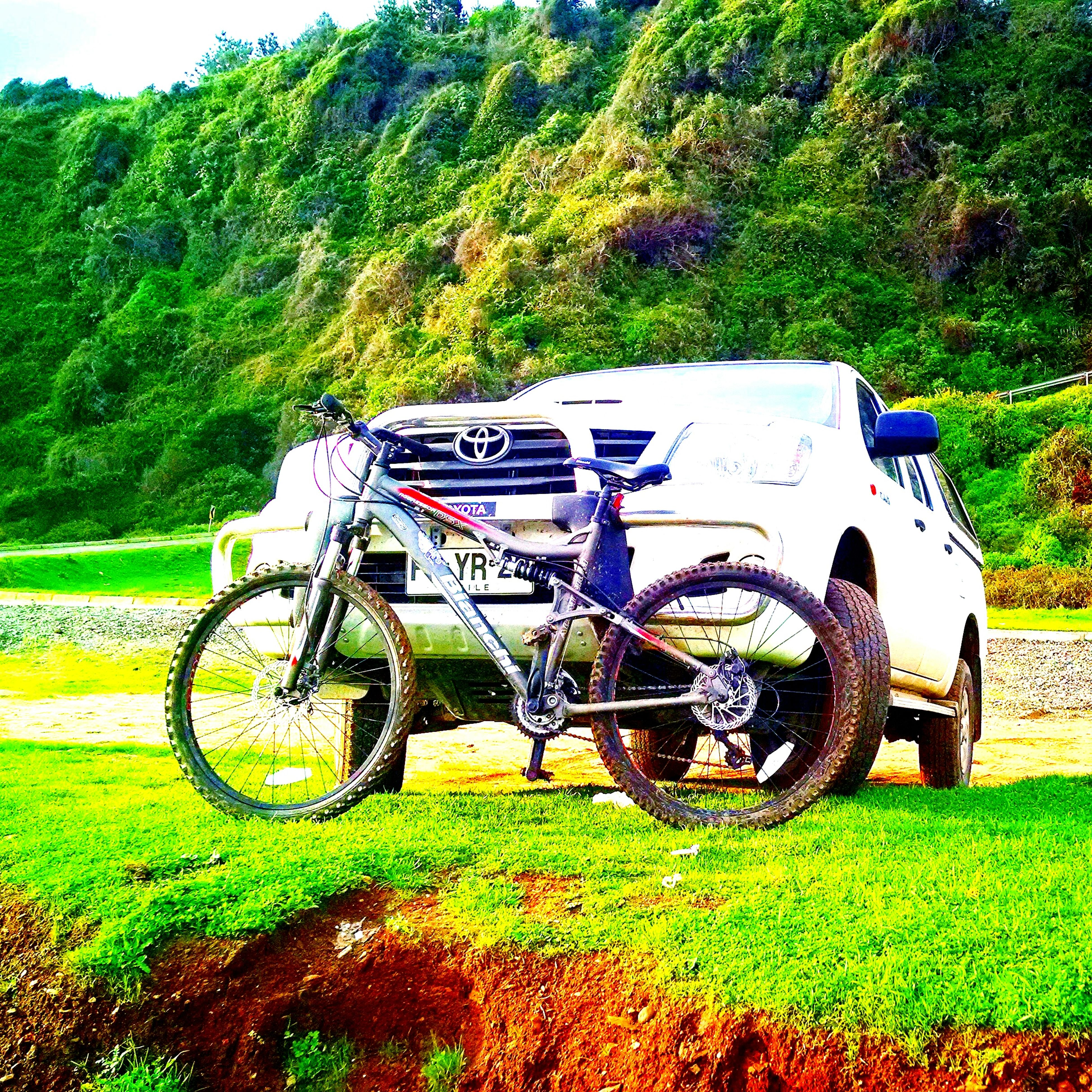 transportation, mode of transport, bicycle, land vehicle, grass, field, stationary, tree, landscape, green color, grassy, parked, parking, wheel, growth, plant, travel, motorcycle, day, nature