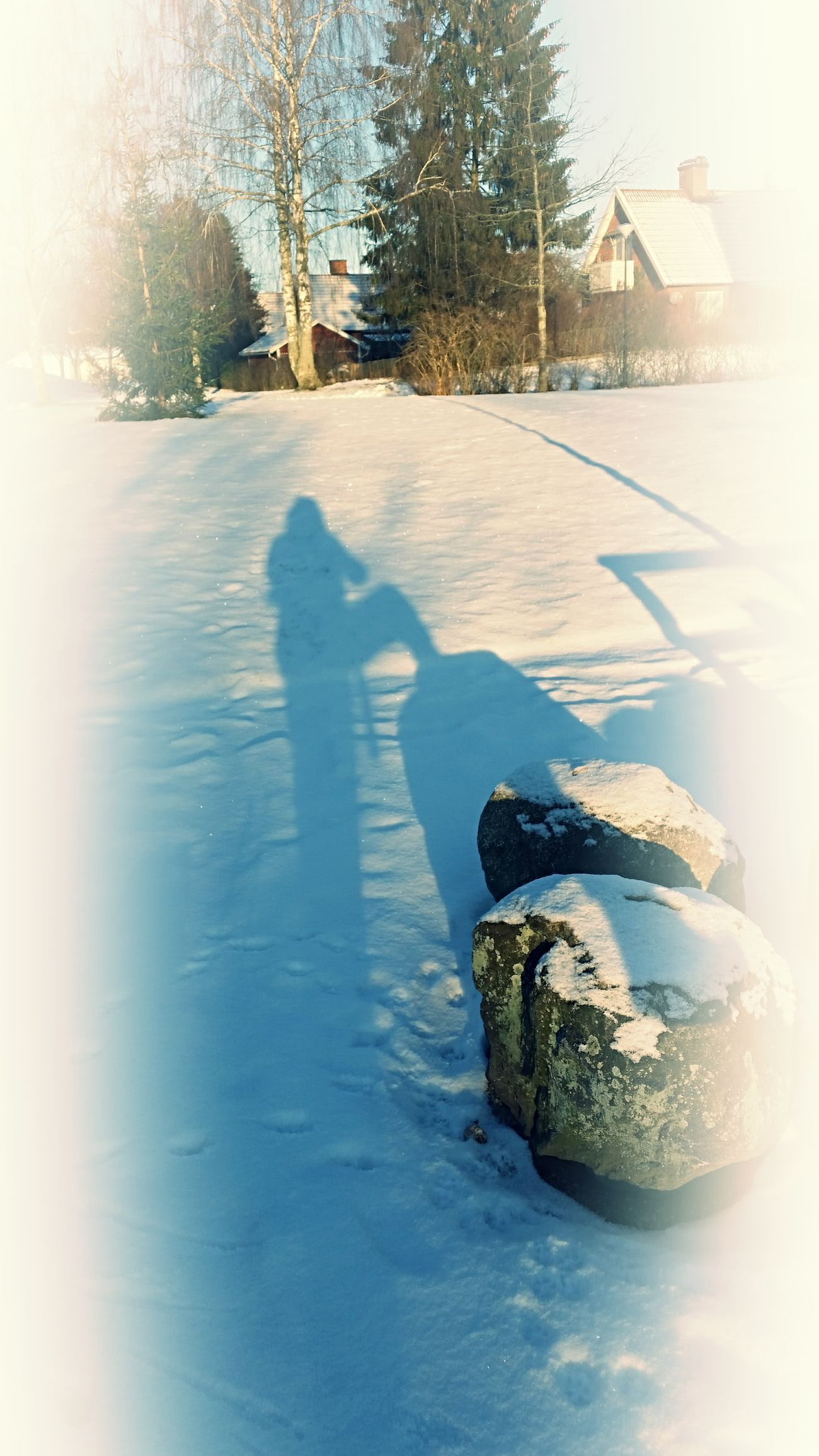 And the winter came.... Great Year Coming Almost Ready Good Times Ahead On My Way Winter Cold Days Shadowplay Me And My Shadow Have A Nice Day♥