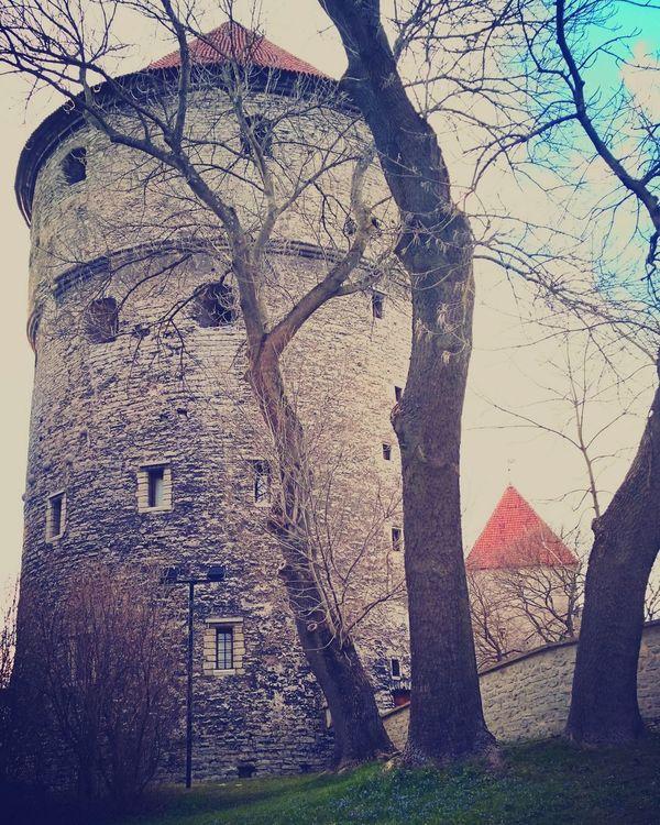 Tallinna Old Town Estonian History Medieval Town Medieval Architecture Visittallinn Packyourthingsandtravel Ilovetravelling  World Heritage Tranquility Spring Ilovetallinn medievaltowers🏰 mylife🌸💜life Is Good Tallinnlovers💙