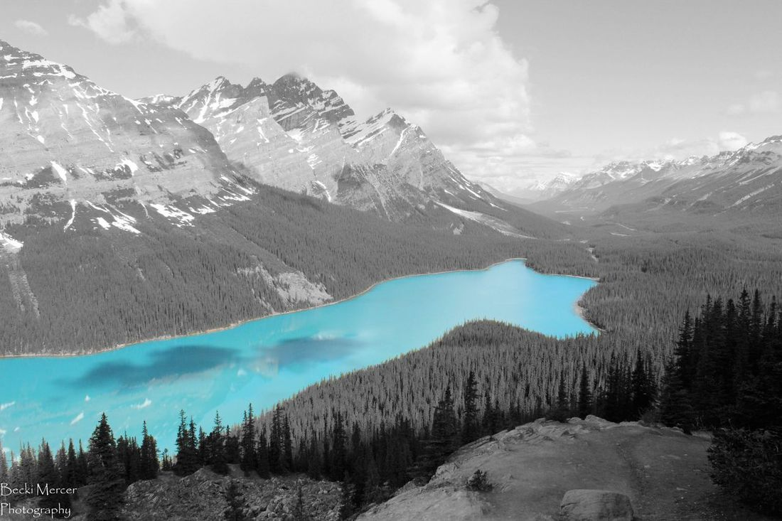 Peyto Lake - Banff National Park, Canada Mountain Scenics Mountain Range Beauty In Nature Lake Snowcapped Mountain Water Awe Tourism Travel Destinations Non-urban Scene Tranquil Scene Majestic First Eyeem Photo Banff National Park  Peyto Lake Canda Canonphotography