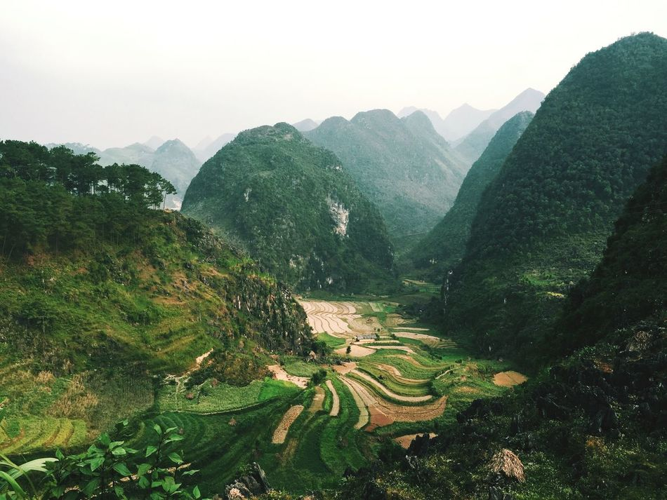 Beautiful stock photos of vietnam, Beauty In Nature, Copy Space, Day, Green Color