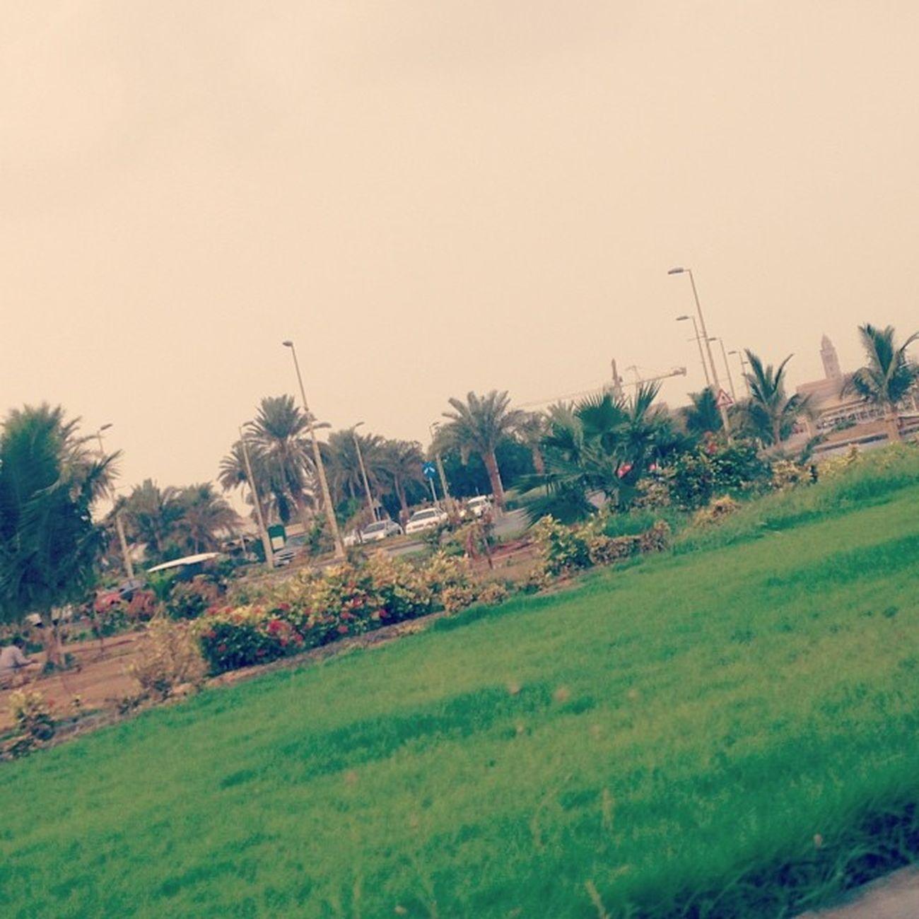 Jeddah_m6r