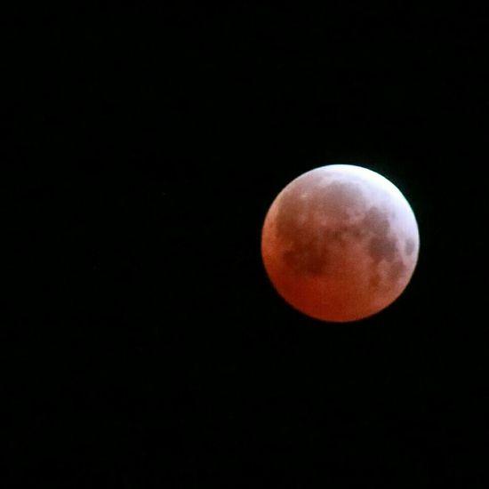 Blood Moon Moon Lunar Eclipse Eclipse Northern California Blood Moon California Astrophotography Goodnight Moon