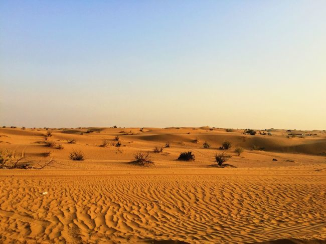 Sand Desert Landscape Sand Dune Tranquil Scene Tranquility Scenics Arid Climate Travel Destinations Environment Copy Space Clear Sky Horizon Over Land Travel Beauty In Nature Non-urban Scene Nature Remote Extreme Terrain Tourism