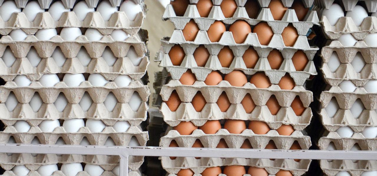 eggs for sale on a market Bazaar Brown Egg Close-up Day Egg Egg Carton Market Sale White Egg