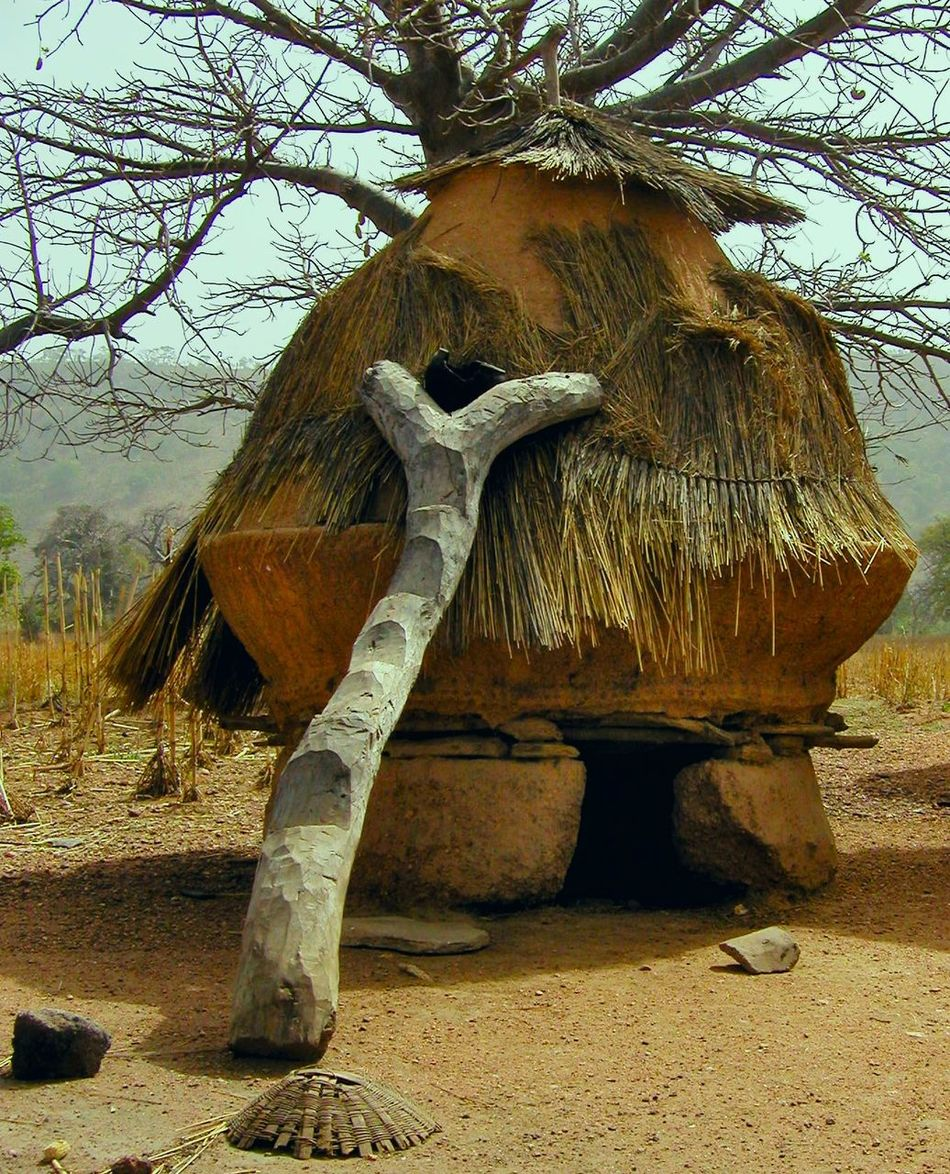 Traditional granary Africa Day Granary Nature No People Outdoors Sky Togo Tree