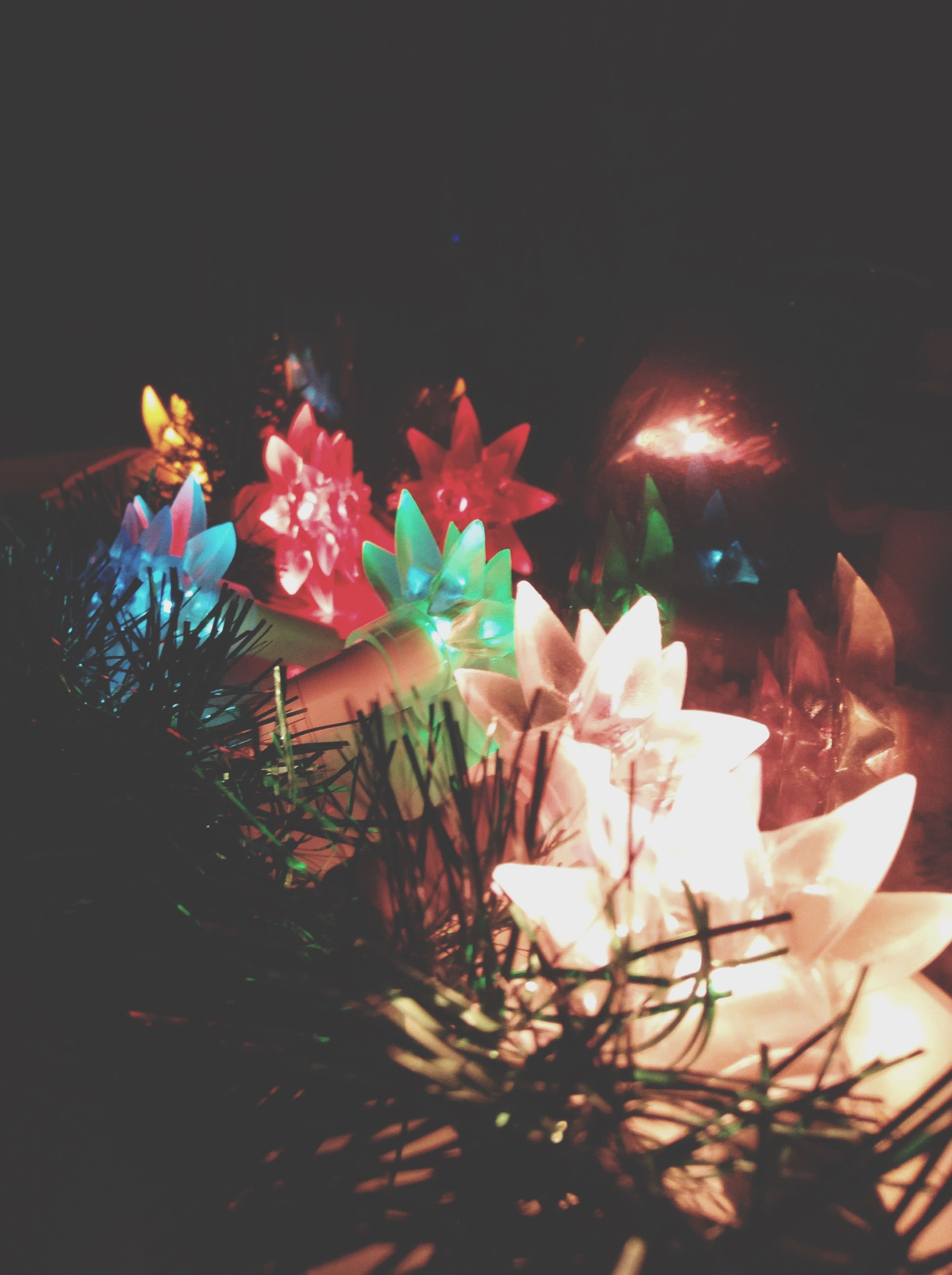 flower, night, illuminated, petal, freshness, plant, fragility, sunlight, decoration, celebration, table, pink color, front or back yard, lens flare, flower head, outdoors, growth, potted plant, no people