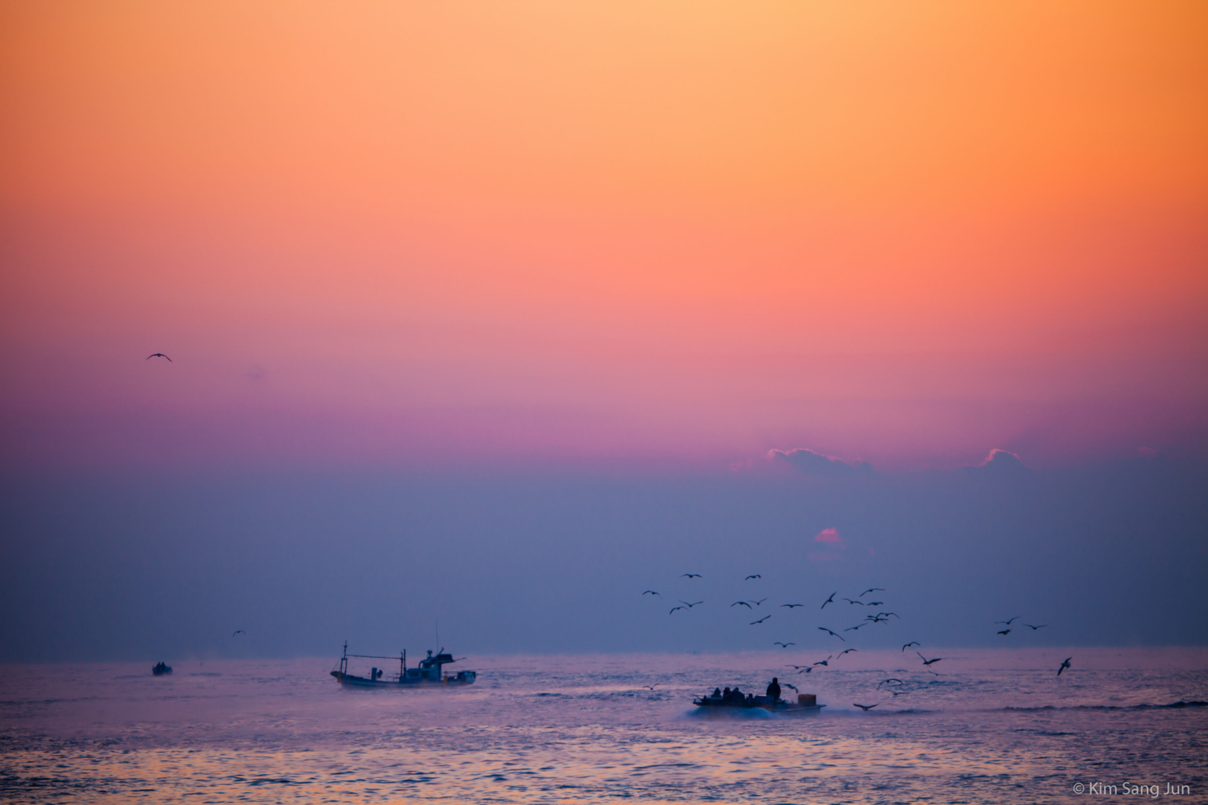 sea, sunset, water, horizon over water, transportation, flying, waterfront, scenics, sky, nautical vessel, beauty in nature, mode of transport, silhouette, orange color, boat, nature, tranquil scene, tranquility, idyllic, bird
