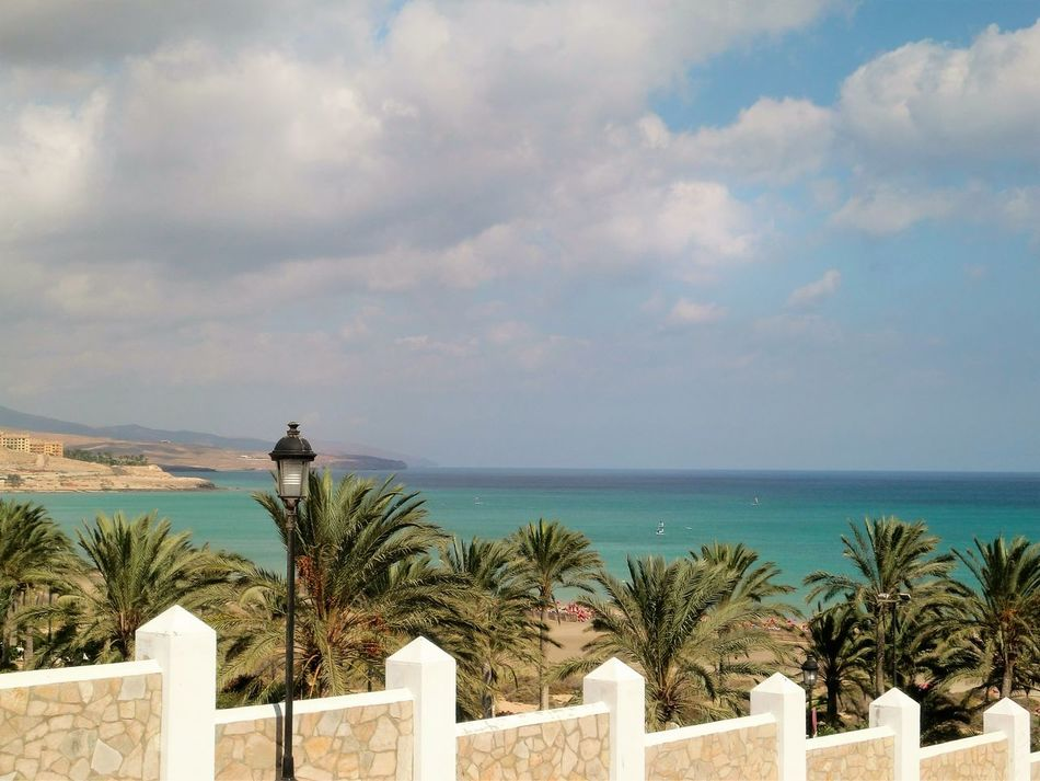 Blue CL Cloud - Sky Cloudy Day Growth Horizon Over Water Idyllic No People Ocean Outdoors Palm Tree Plant Remote Scenics Sea Sky Tourism Tranquil Scene Tranquility Travel Destinations Tree Water Costa Calma Fuerteventura