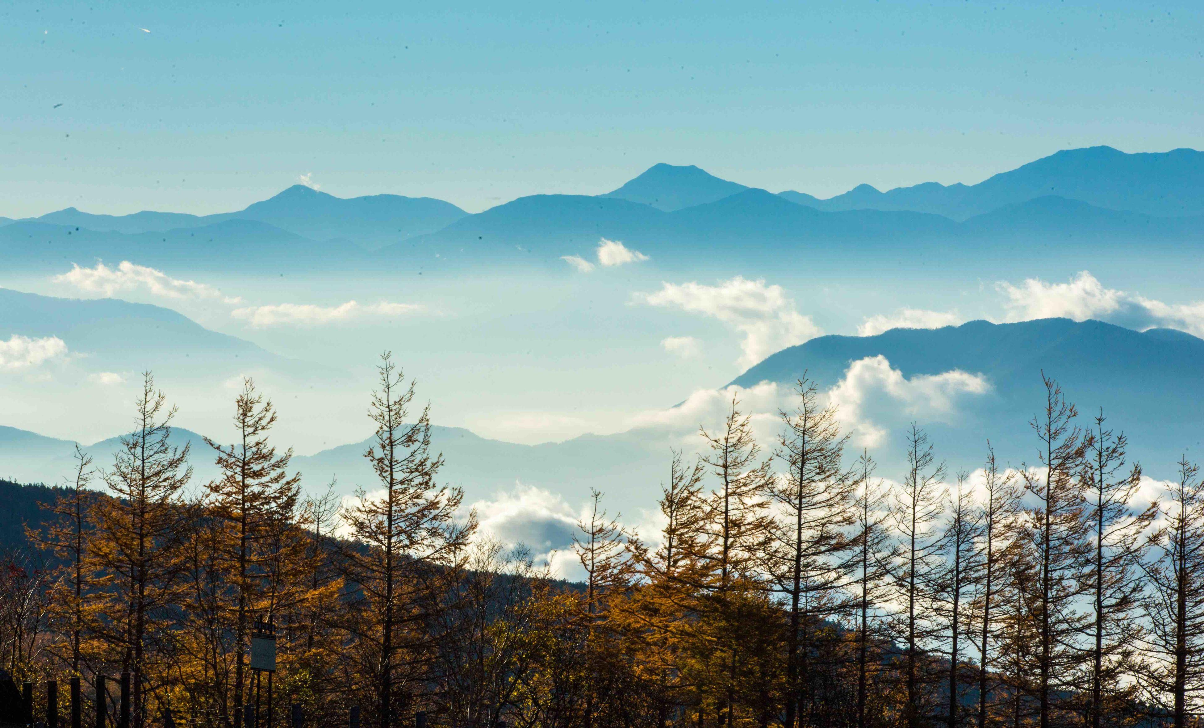 mountain, tranquil scene, mountain range, scenics, tranquility, beauty in nature, sky, nature, tree, landscape, blue, idyllic, non-urban scene, snowcapped mountain, snow, majestic, winter, season, growth, cold temperature