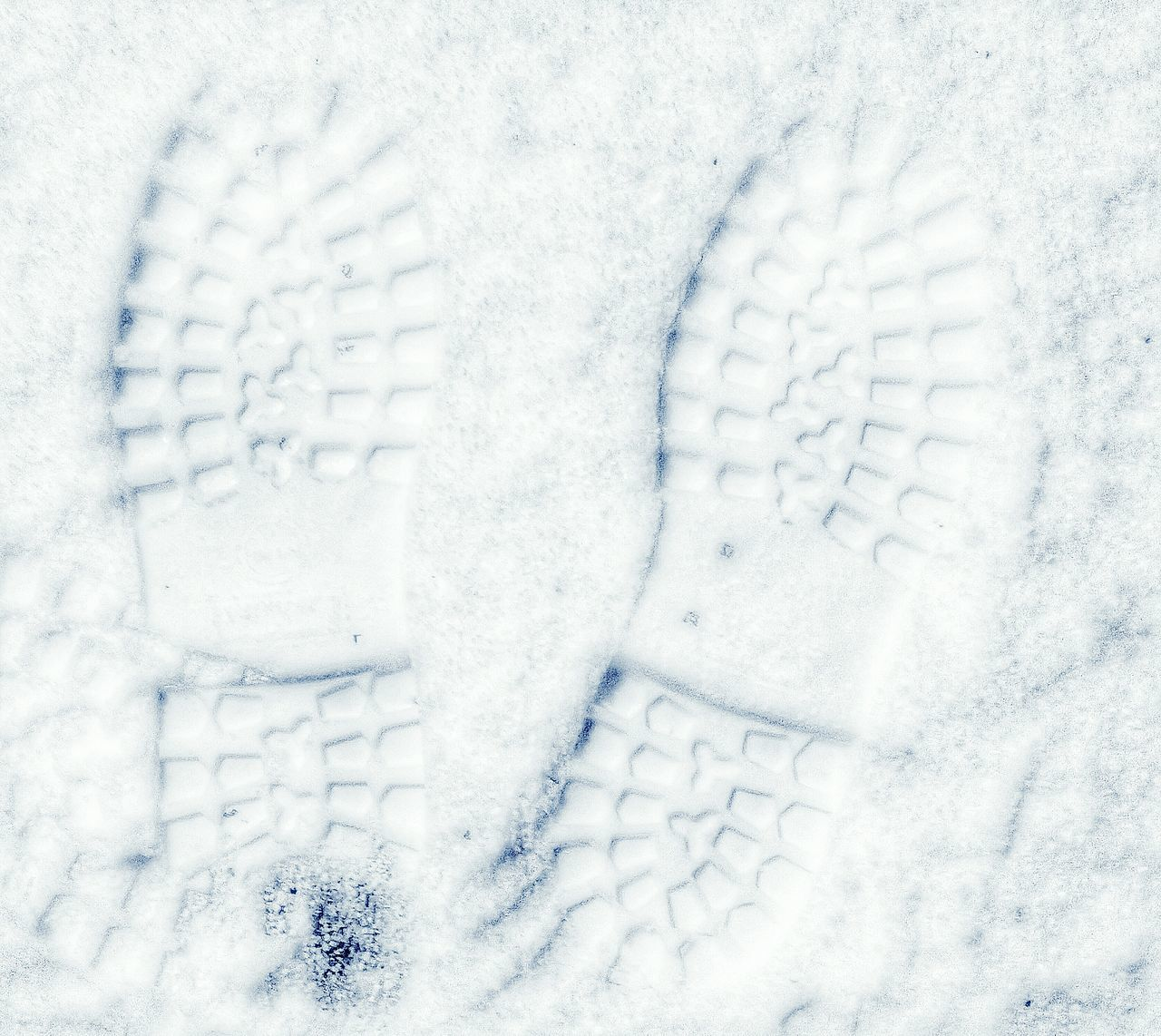 Finally. First Snow Pennsylvania Pennsylvania Beauty Snow Footprints Footprints In The Snow FootPrintsInTheSnow Footprints In Snow Winter Wonderland Winter Wintertime EyeEm Best Shots Eye4photography  Showcase: January