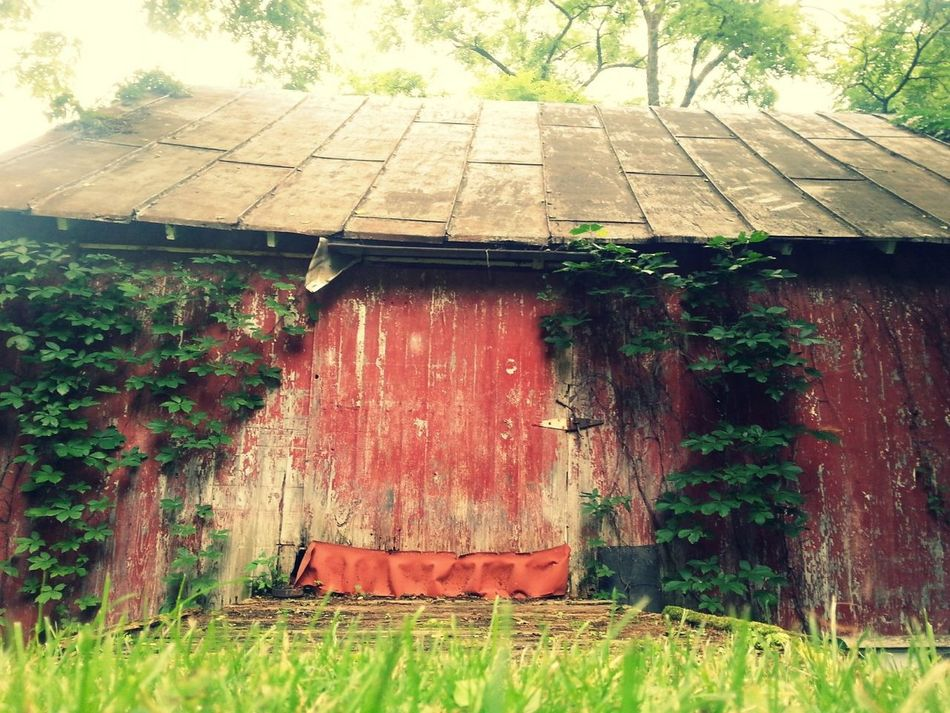 Red Barn, hills of Ohio Outdoors Building Exterior No People Art Is Everywhere Barn Red Countryside Day Built Structure Architecture Grass Tree Nature Ohio