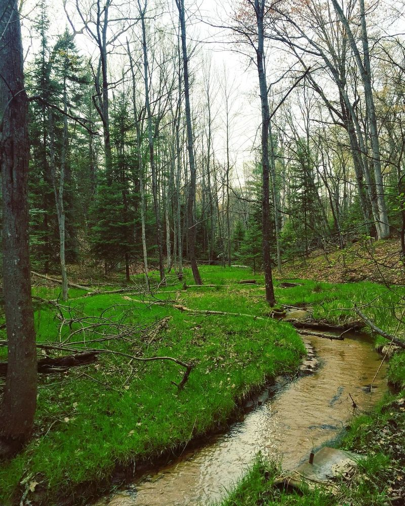 Up north in Michigan! Oscoda Michigan Upnorth Puremichigan Loveit