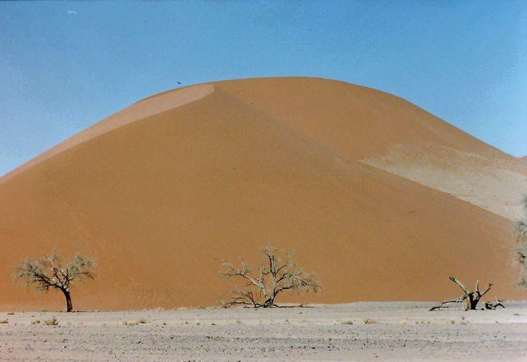 The KIOMI Collection Namibi namibia
