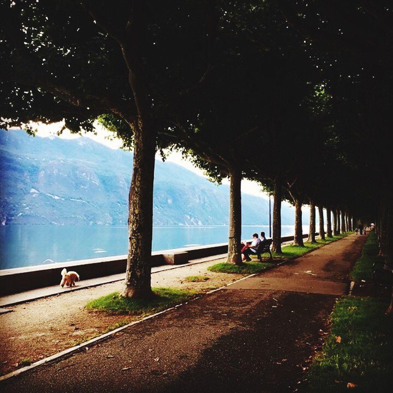 Aix-les-Bains lake Aix Les Bains Aixlesbains France Lake Lakeside Lakewalk Promenade