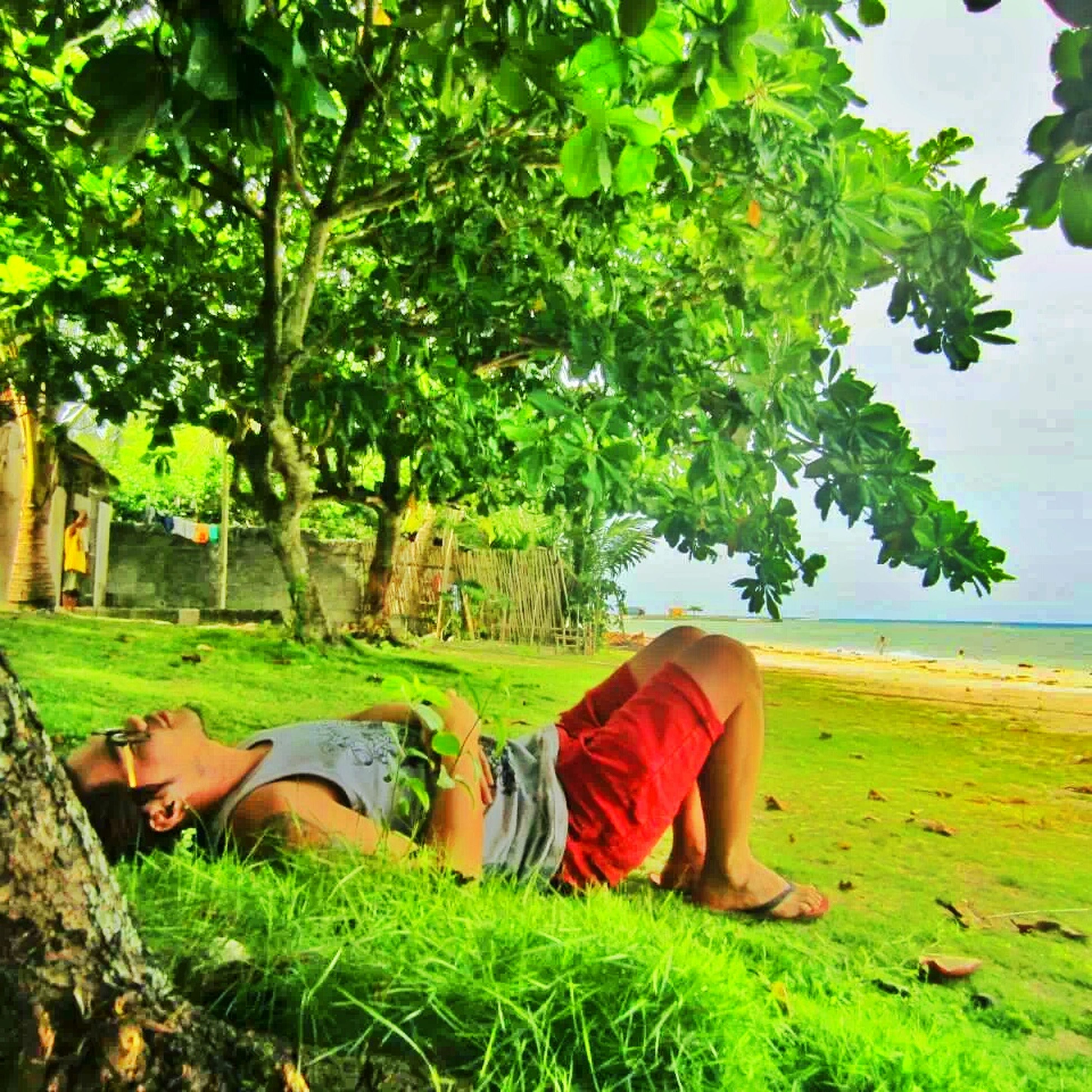 relaxation, lifestyles, leisure activity, grass, sitting, tree, person, casual clothing, relaxing, resting, nature, lying down, green color, rear view, day, full length, water, sunlight