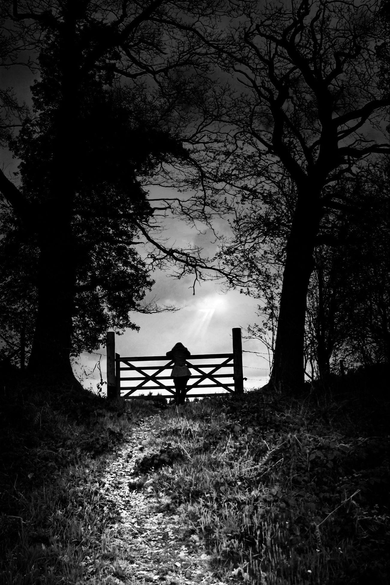 Path Blackandwhite Landscape Light Eye4photography  Monochrome Shootermag Sadness Tracks