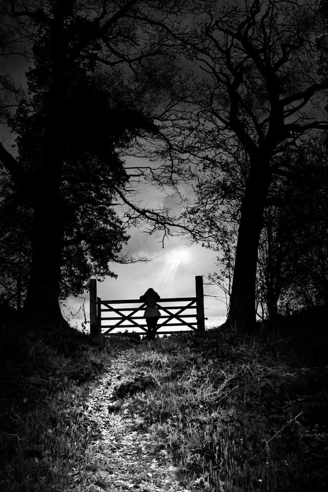 Path Blackandwhite Landscape Light Eye4photography  Monochrome Shootermag Sadness Tracks