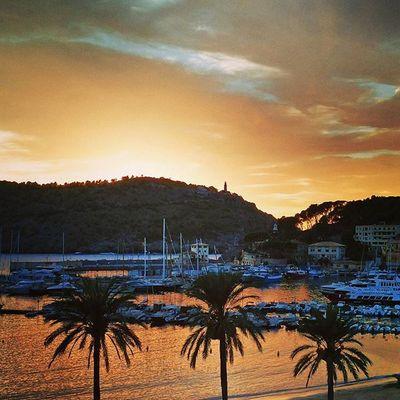 I told you, it's heaven! 😎 🌴 Endlesssummer Vacationtweet Lifeisgood Portdesóller Mallorca Baleares Spain