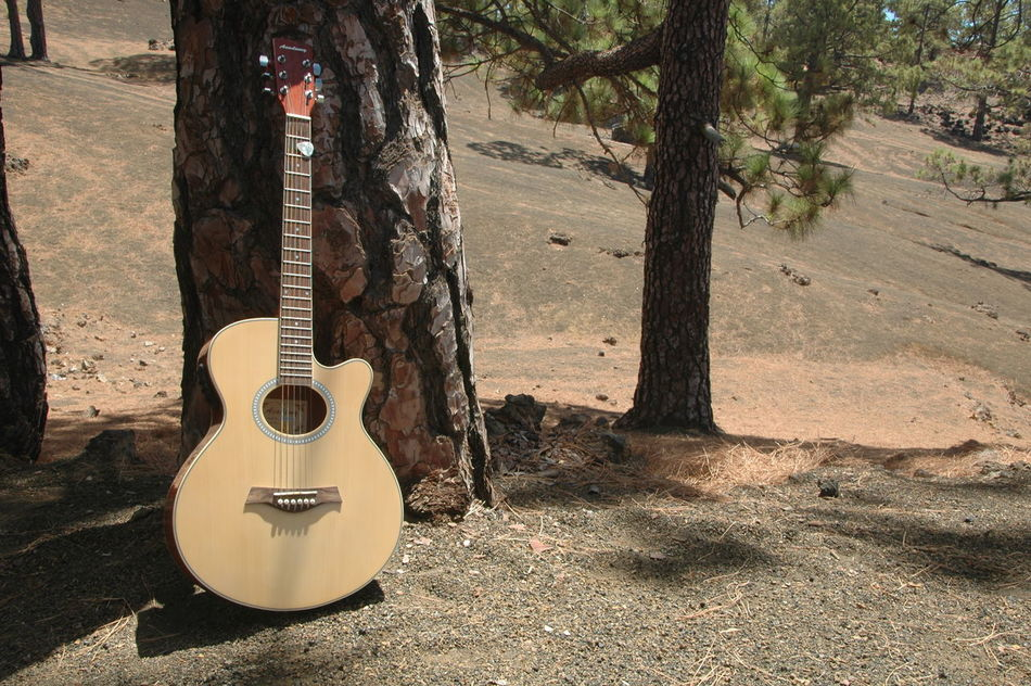 Blue Canarias Canary Canary Islands Cho Tenerife Day Guitar Mountain Music Musical Instrument Nature Nature No People Outdoors Parque Nacional Del Teide Sky Teide Teide Volcano Tenerife Tree Vulcan