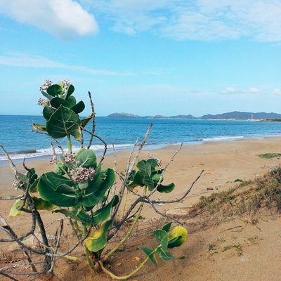 Desde Playa Chirgüa, Macanao IslaDeMargarita Venezuela Vscocam Adventureseries January