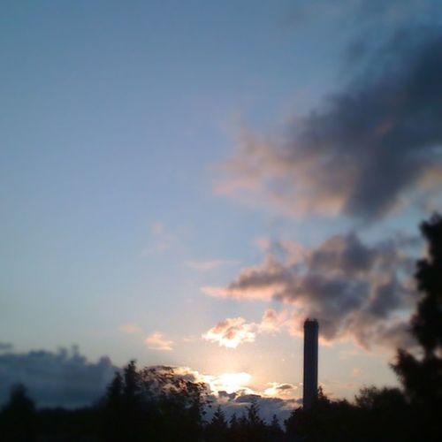 Early bird Sun Morning DeBilt