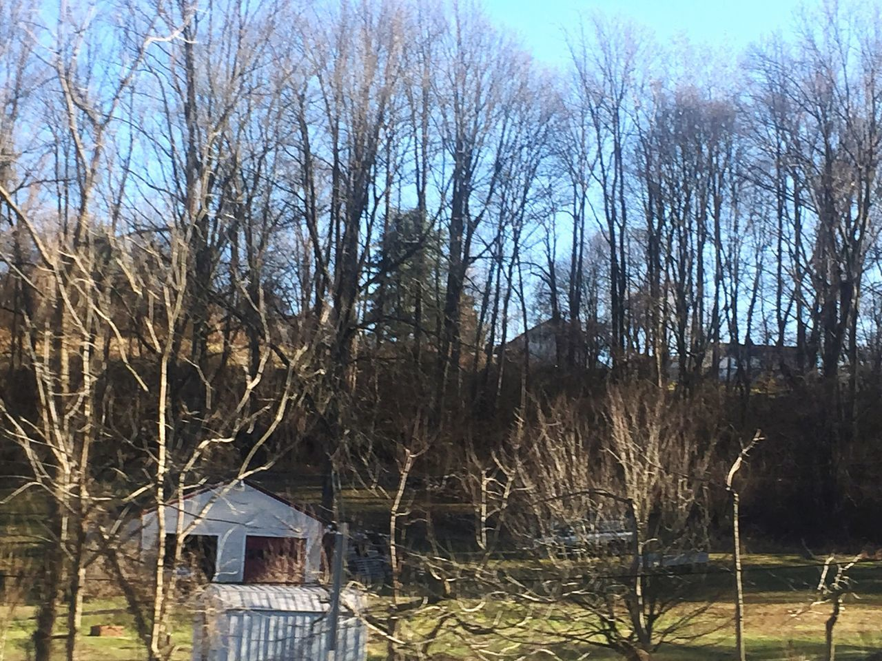 Bare Tree Tree Nature Sky Outdoors No People Day Built Structure Building Exterior Tranquility Branch Architecture Beauty In Nature Chester Springs Pennsylvania Beauty In Nature Landscape Tranquility Beauty Of Decay