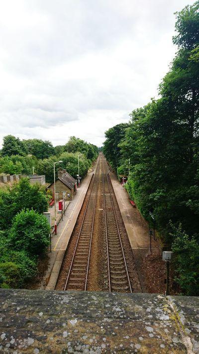 Train Tracks Trees Huddersfield Railtracks