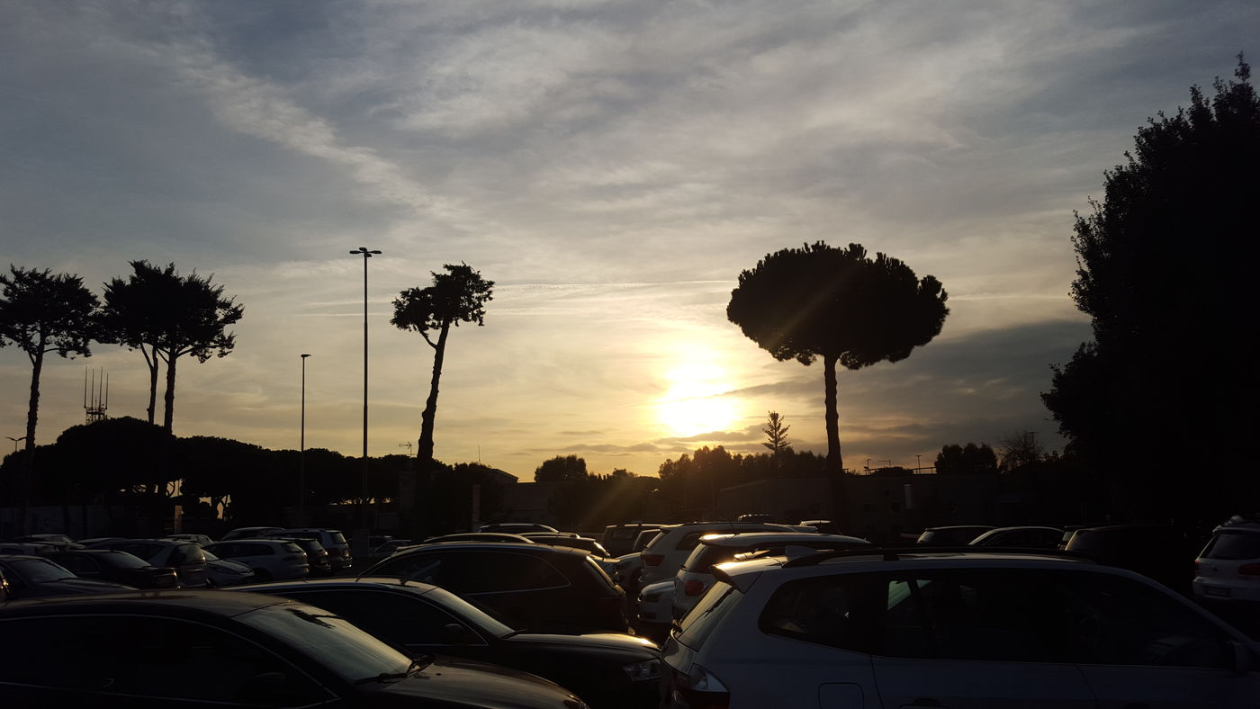Airport Rome Sunset Catching A Flight Sun Italy First Eyeem Photo