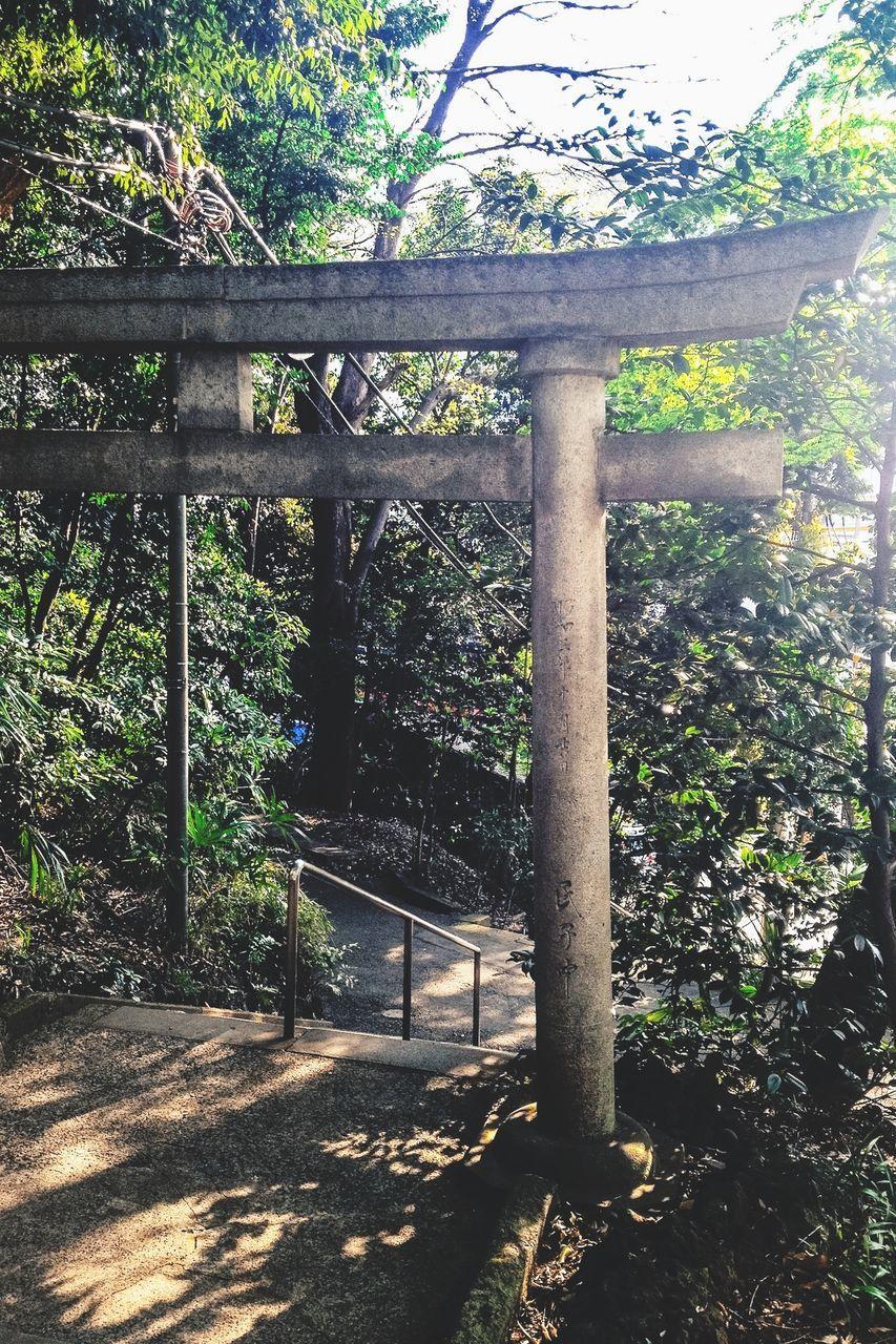 Torii Gate At Yoyogi Hachimangu Shrine