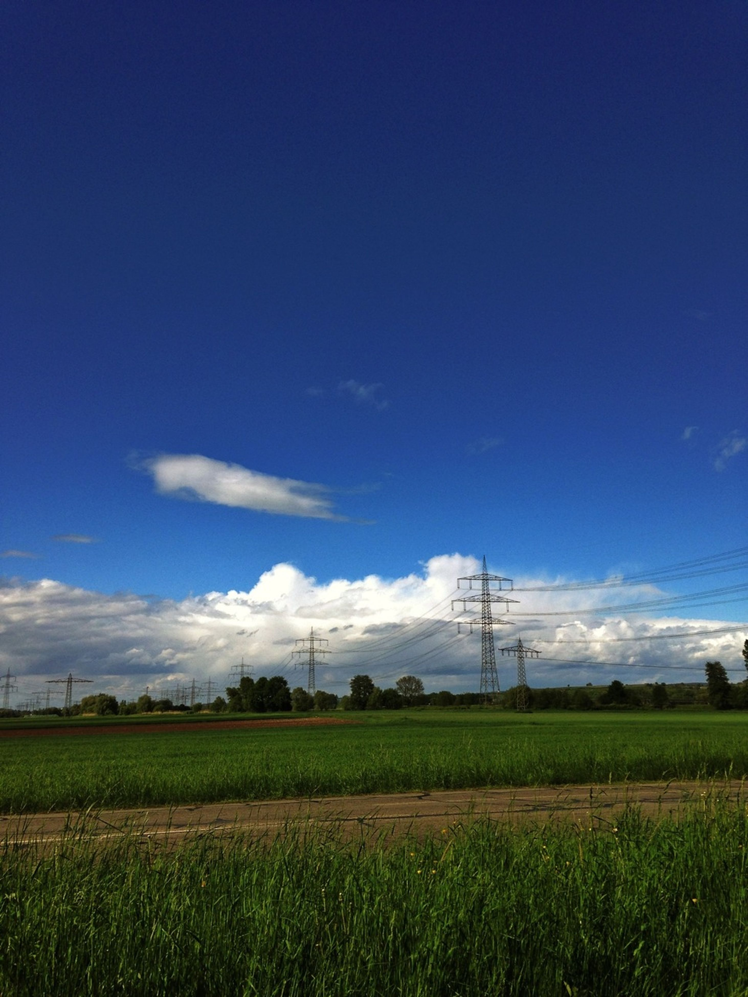 field, landscape, rural scene, agriculture, blue, tranquil scene, sky, tranquility, farm, electricity pylon, grass, power line, fuel and power generation, scenics, beauty in nature, crop, nature, growth, electricity, horizon over land