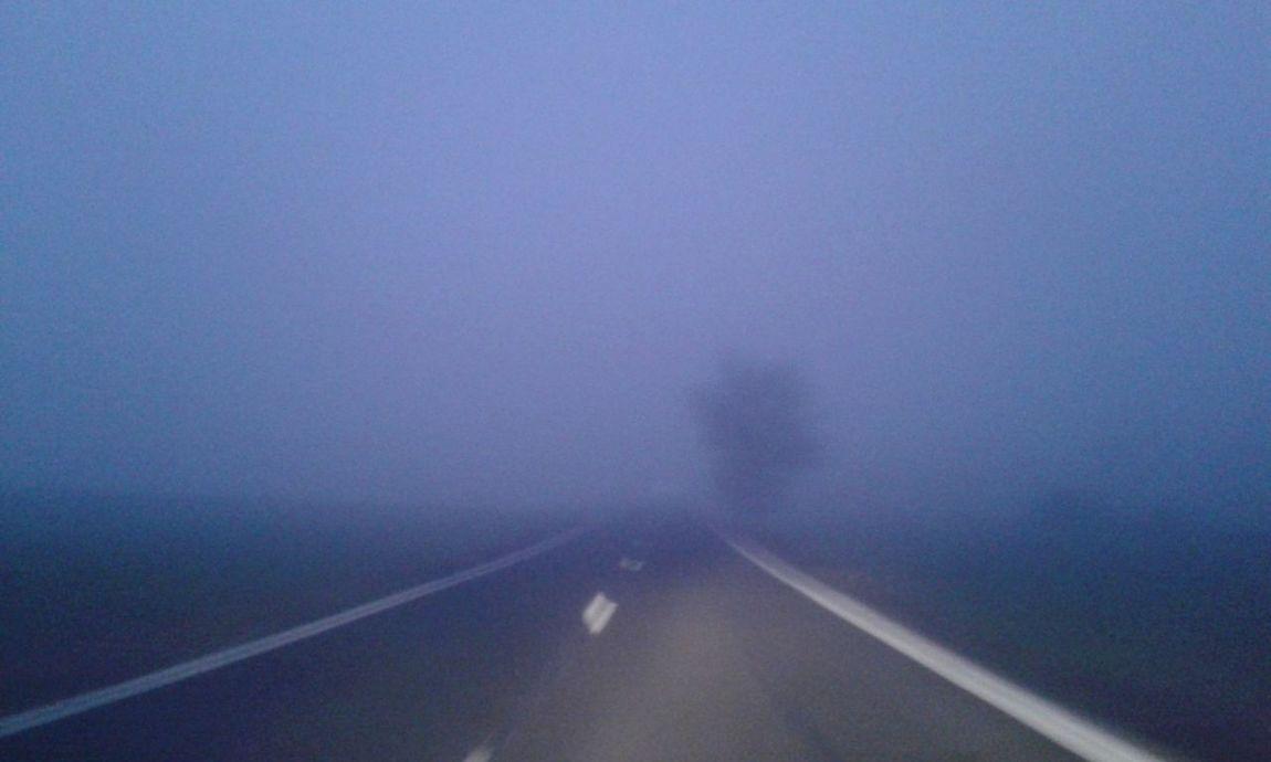 Niebla Now No Edits No Filters EyeEmBestPics Hello World Popular Photos Fantastic Special👌shot InTheRoad