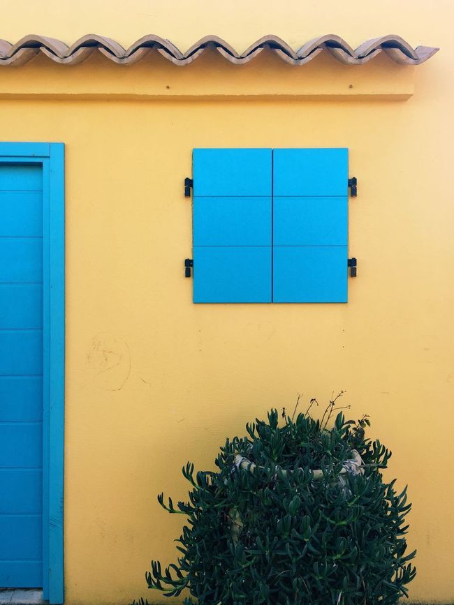 Colors And Patterns minimal jungle, by Claudia Ioan Architecture Built Structure Window Blue Building Exterior Yellow Wall House Green Outdoors No People Mobile Photography IPhoneography The Roll VSCO Exterior Façade Architecture Urban Exploration
