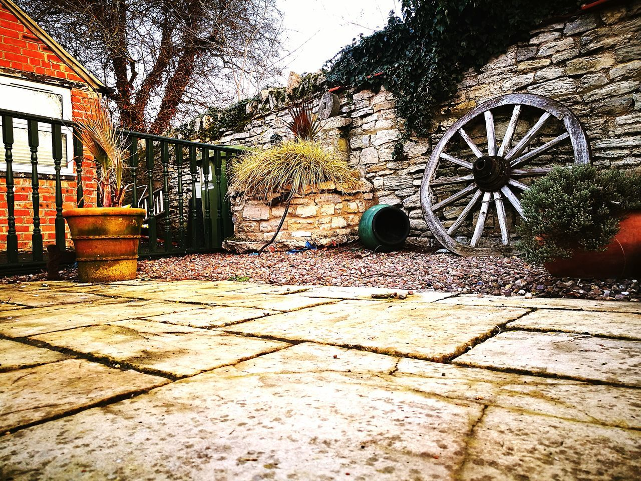 Boat Wheel Ship Wheel Plant Pot Tree Porch Cottage Village Randomshot Art In Everything Beautiful Photography No People Check This Out Popular Photos