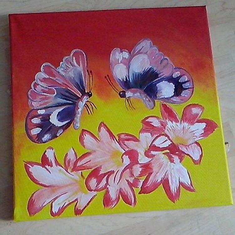 Paint Art Flowers Butterfly Colors