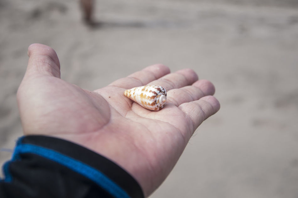 Beautiful stock photos of travel, human hand, one person, human body part, beach