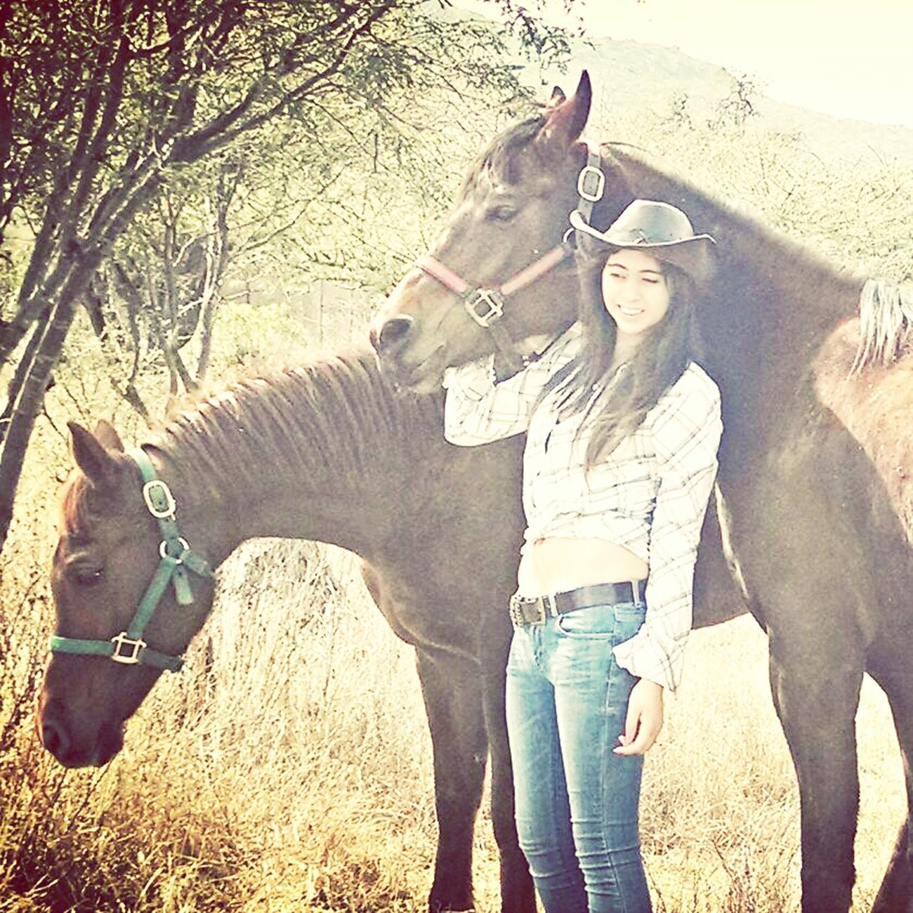 Myhorses Ilovethem! Being Us!
