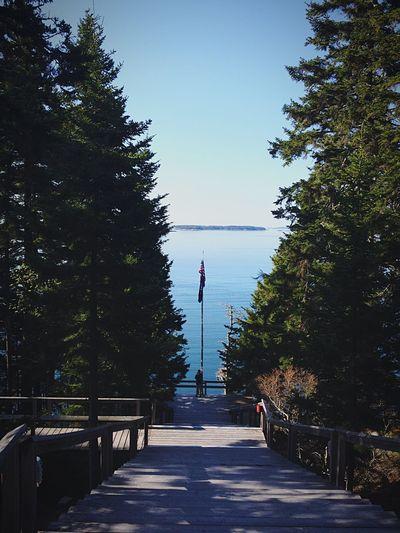 My Favorite Place Haystack Haystack School Of Craft Deer Isle Art Craft Blue Walkway Stairs