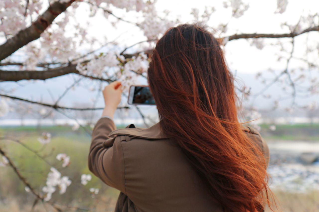 Beauty In Nature Branch Cherry Blossoms Enjoying Life Everyday Joy EyeEm Nature Lover EyeEmNewHere First Eyeem Photo Flower Focus On Foreground Hello World Human Body Part Leisure Activity Let Your Hair Down Mobile Conversations Nature One Person Outdoors People People And Places Portrait Of A Woman Taking Photos Travel Tree Women The Portraitist - 2017 EyeEm Awards