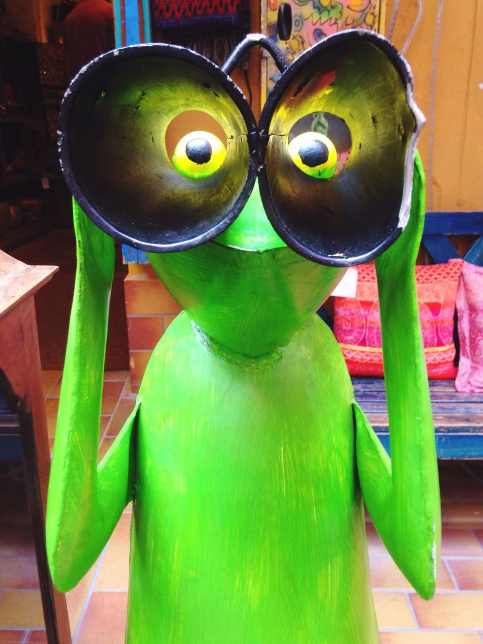 Hello from the other side. Vibrant Color Colorful Green Binoculars Frog Perspective Frog Focused Point Of View Hello! Spying Green Color