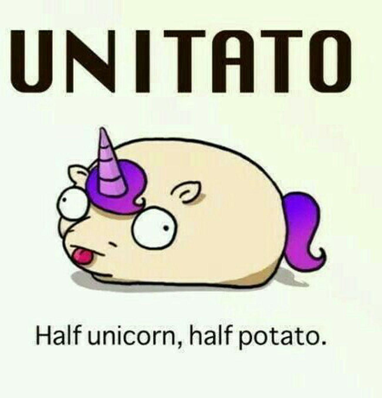 UnitAto Unicornio Potates Kawai