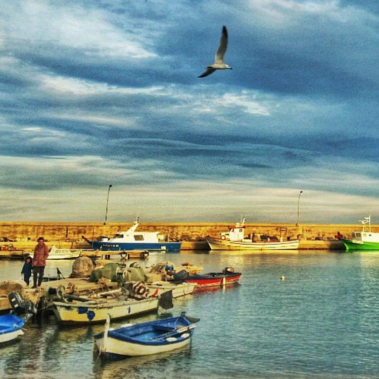 Deltaebre Ampolla Descobreixcatalunya Catalunya Clikcat Cat Delta Tarragona