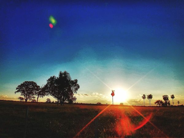 Avaré SP BRASIL ☀️ 🐎 🇧🇷 EyeEm Avare Heaven EyeEm Best Shots Sunset #sun #clouds #skylovers #sky #nature #beautifulinnature #naturalbeauty #photography #landscape EyeEm Gallery EyeEmBestPics HDR EyeEmBestEdits EyeEm Nature Lover Hello World