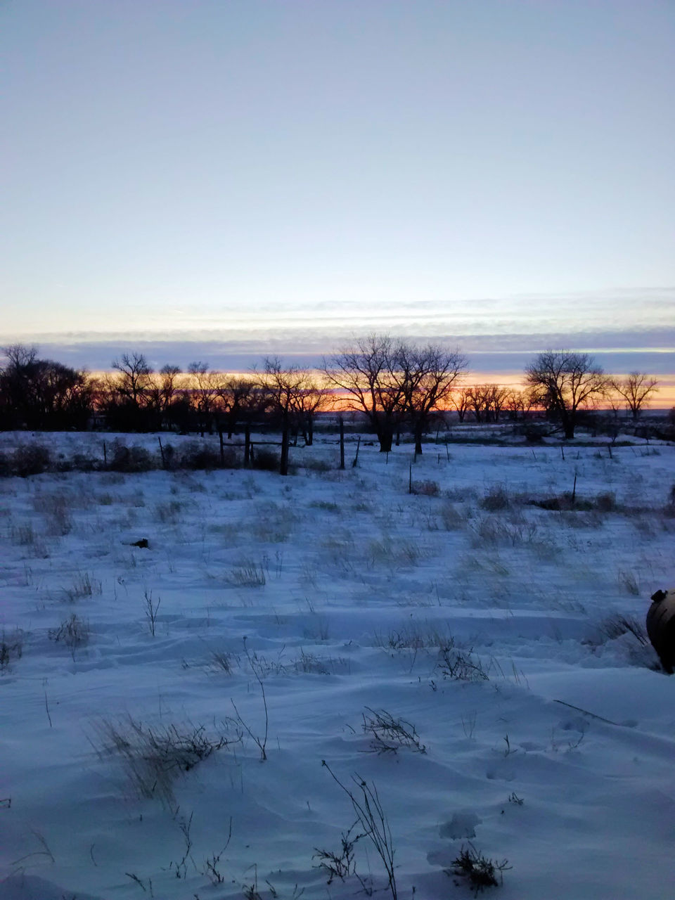 winter, cold temperature, snow, nature, cold, tranquil scene, tranquility, landscape, beauty in nature, tree, bare tree, scenics, frozen, outdoors, no people, sky, sunset, day, clear sky
