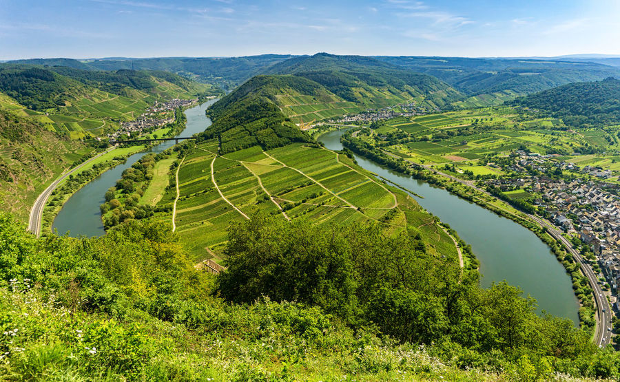 Moselschleife Calmont Calmont Startplatz Eller, Germany Mosel Mosel River In Germany Neef, Germany Weinberg Agriculture Bremm, Germany Green Color High Angle View Landscape Mosel River Moselle Moselschleife Nature No People Outdoors River Rural Scene Scenics Travel Destinations Vinyards
