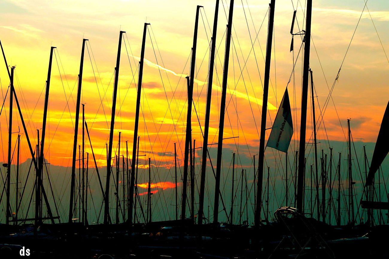 Tadaa Community Sea Sunset EyeEm Nature Lover