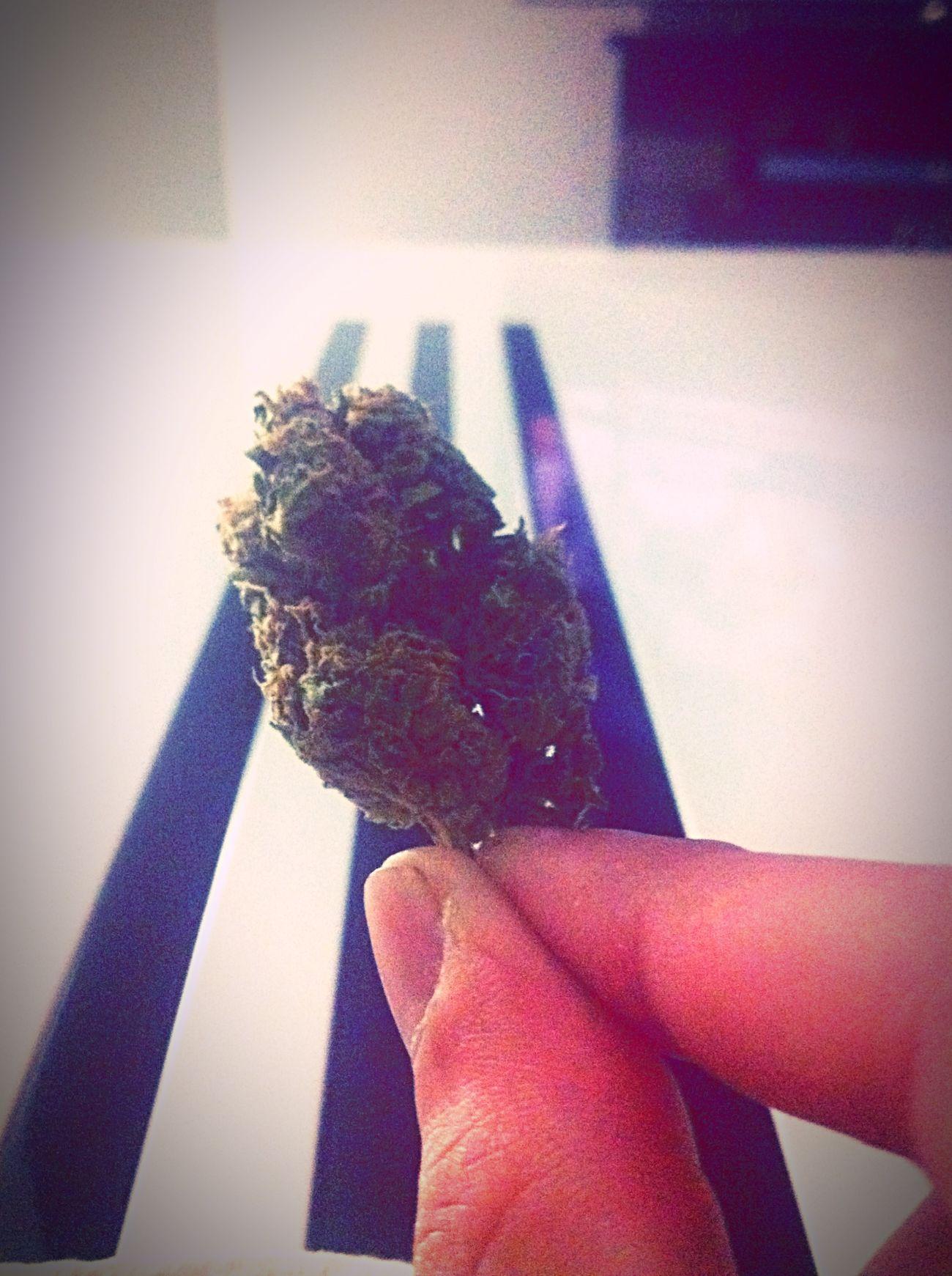 Kush Power Smoking Weed Picofthenight 💨💨💨💨💨🍁🎄