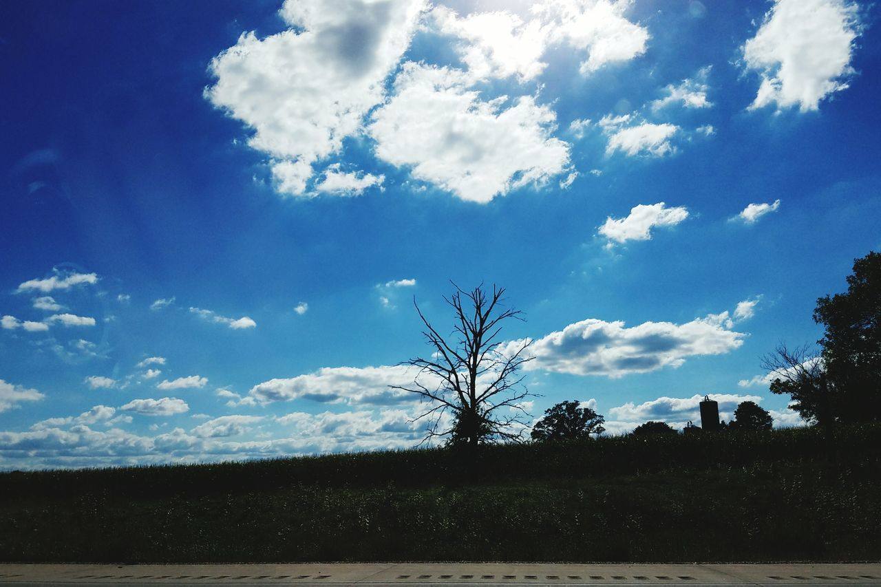 sky, nature, landscape, tranquility, tree, beauty in nature, scenics, silhouette, cloud - sky, tranquil scene, blue, no people, day, outdoors