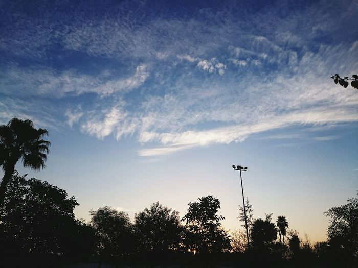 A beautiful morning Landscape Clouds Sky View Vscocam Morning